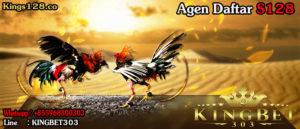 S128 : Permainan Adu Ayam Online Paling Top Saat Ini