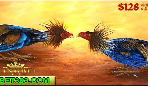 Bandar Online Adu Ayam S128 Terbaik Duit Asli
