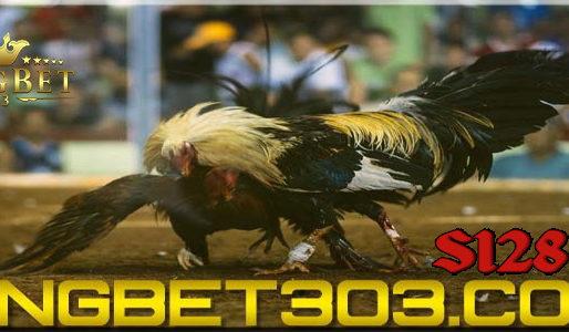 Game Sabung Ayam Filipina Online Terpopuler Di Indonesia