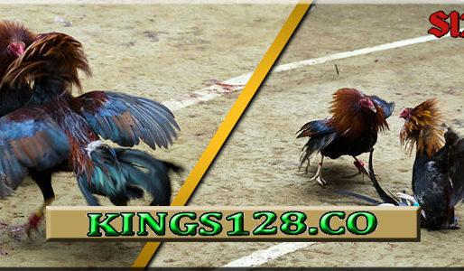 Sabung Ayam S128 Live Deposit 50 Rubu