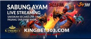 Situs Adu Ayam Online Uang Asli Paling Terpercaya