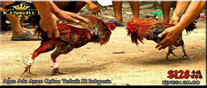 Situs S128 Sabung Ayam Online Terpercaya Zaman Now