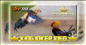 Daftar Sv388 Laga Ayam Di Agen Terpercaya Indonesia, Buruan!